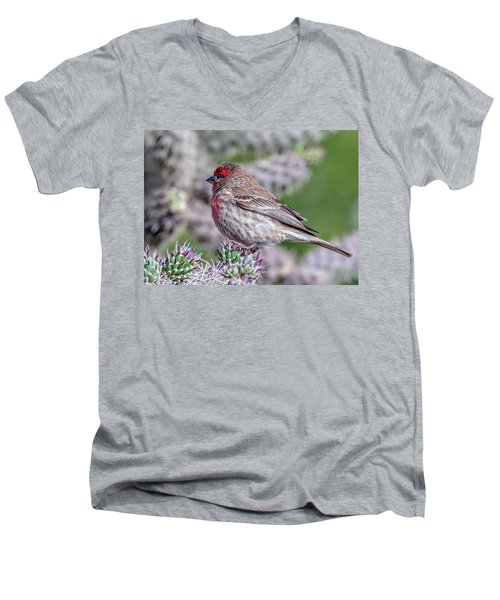 House Finch Male Men's V-Neck T-Shirt by Tam Ryan