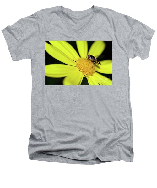Men's V-Neck T-Shirt featuring the photograph Hoverfly On Bright Yellow Daisy By Kaye Menner by Kaye Menner