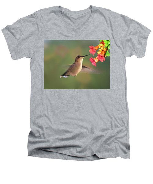 Hummer With Trumpet Vine Flowers Men's V-Neck T-Shirt by Judy Johnson