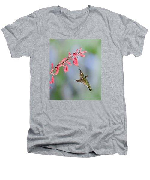 Hummingbird Men's V-Neck T-Shirt by Alan Toepfer