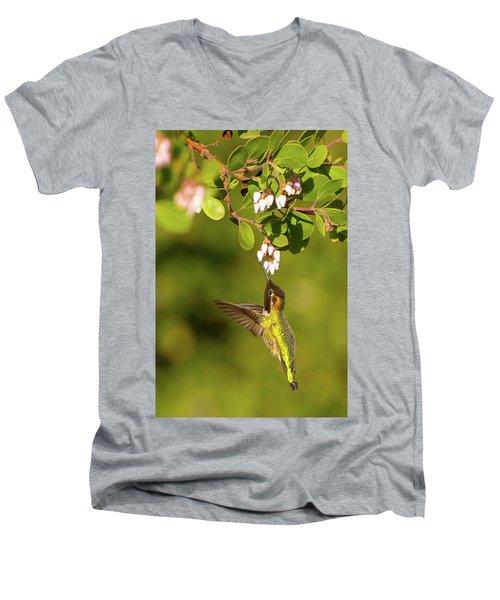 Hummingbird And Manzanita Blossom Men's V-Neck T-Shirt