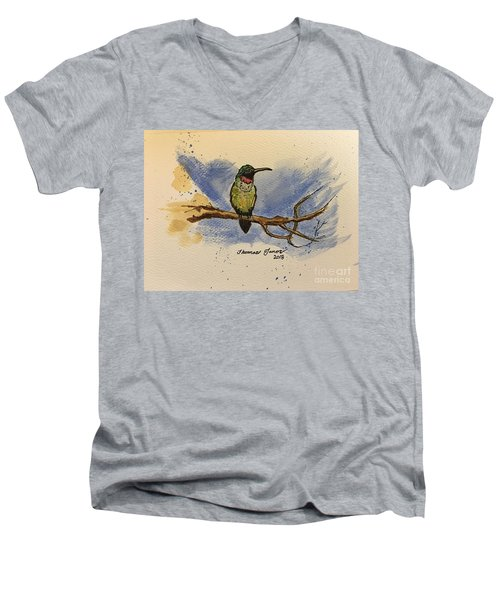 Hummingbird At Rest Men's V-Neck T-Shirt