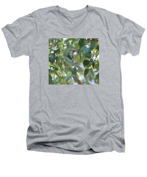 Hummingbird Men's V-Neck T-Shirt
