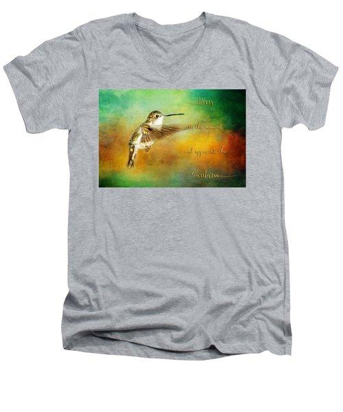 Hummingbird Hover Men's V-Neck T-Shirt