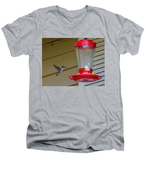 Hummingbird In Flight Men's V-Neck T-Shirt