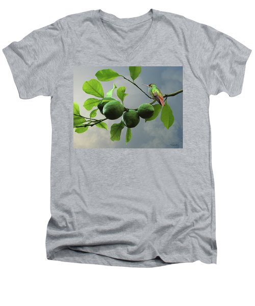 Hummingbird In Lime Tree Men's V-Neck T-Shirt