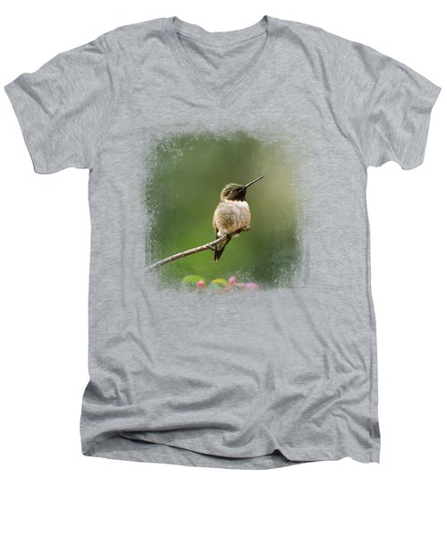Hummingbird In The Garden Men's V-Neck T-Shirt