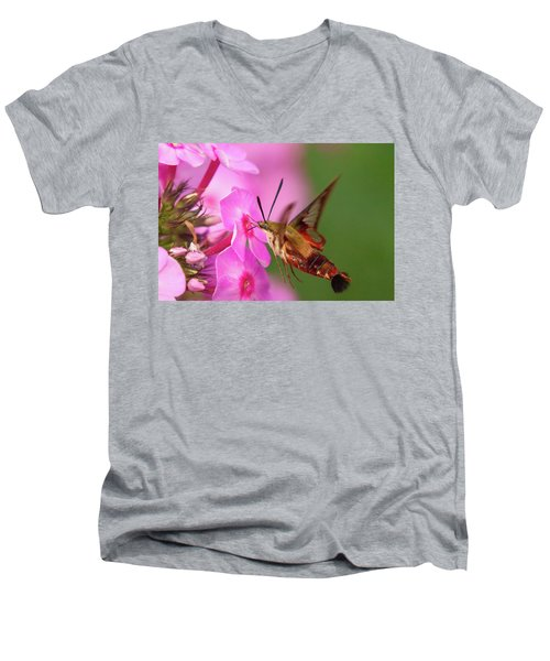 Hummingbird Moth Feeding 1 Men's V-Neck T-Shirt