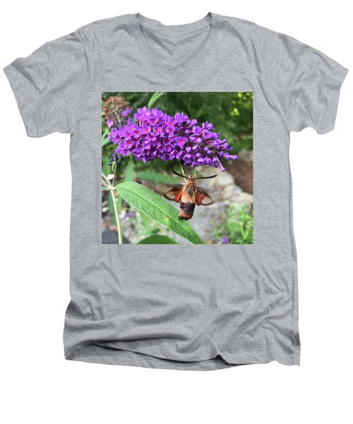Hummingbird Moth Men's V-Neck T-Shirt