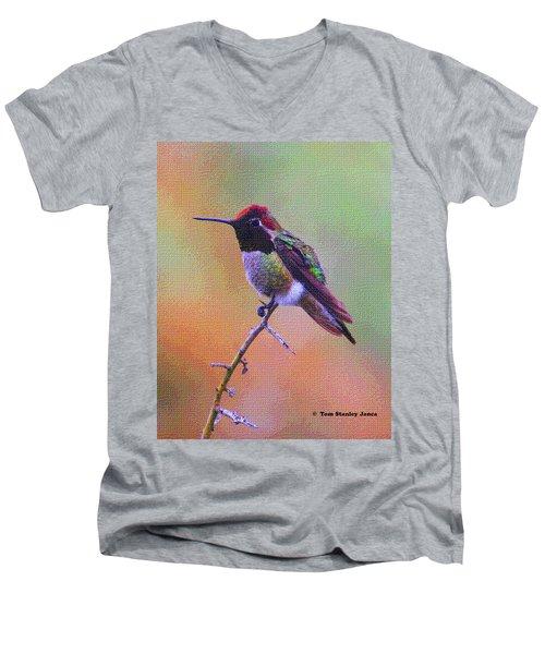 Hummingbird On A Stick Men's V-Neck T-Shirt by Tom Janca