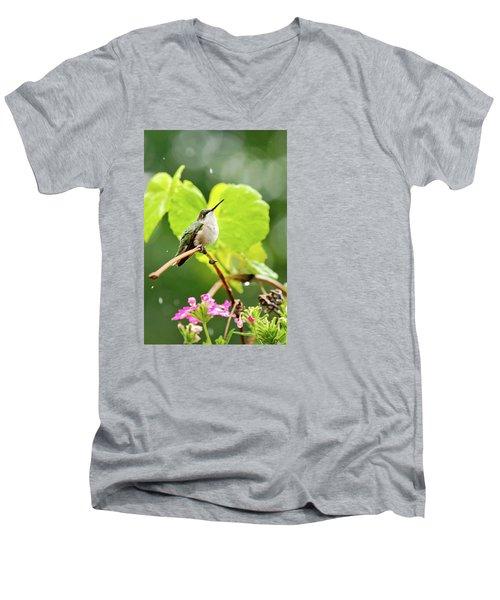 Hummingbird On Vine In The Rain Men's V-Neck T-Shirt