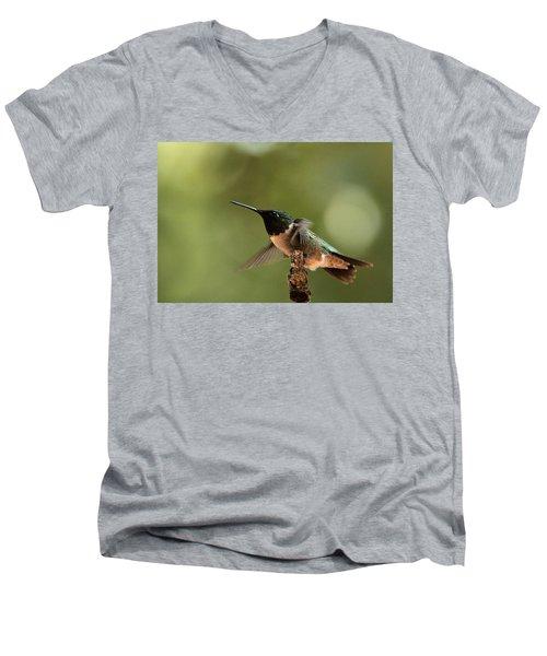 Hummingbird Take-off Men's V-Neck T-Shirt