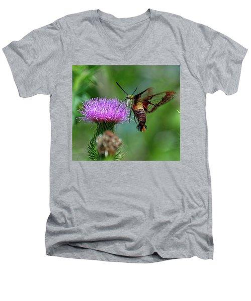 Hummingbirdbird Moth Dining Men's V-Neck T-Shirt