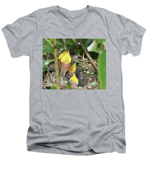 Hungry Baby Birds Men's V-Neck T-Shirt by Jerry Battle
