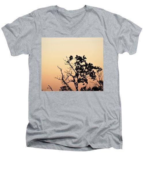 Hush Little Baby Men's V-Neck T-Shirt by John Glass