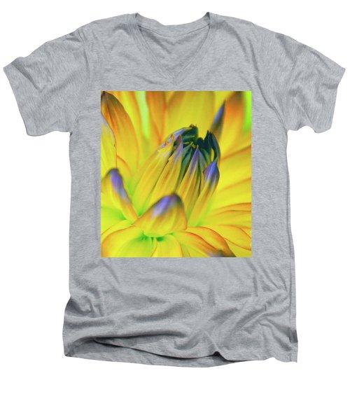Husky Colors Men's V-Neck T-Shirt