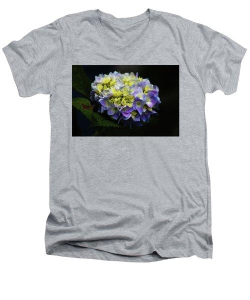 Hydrangea 3705 H_2 Men's V-Neck T-Shirt