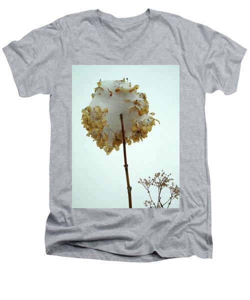 Hydrangea Blossom In Snow Men's V-Neck T-Shirt
