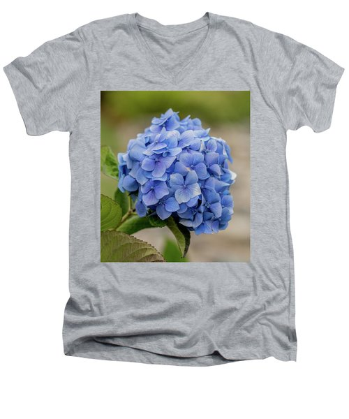 #hydrangea In Blue Men's V-Neck T-Shirt