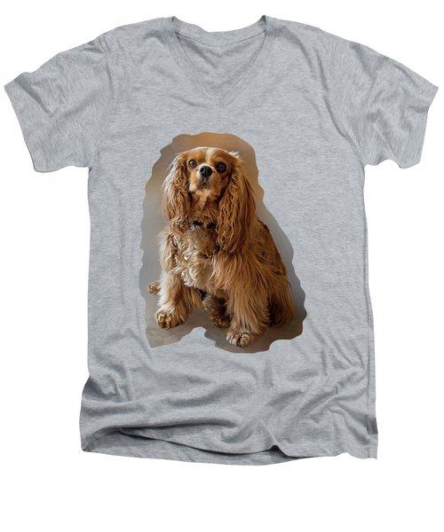 Royal Pose Men's V-Neck T-Shirt