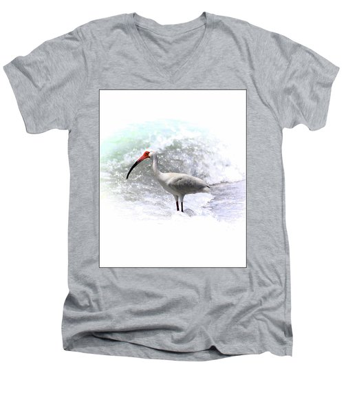 Ibis Surf Men's V-Neck T-Shirt