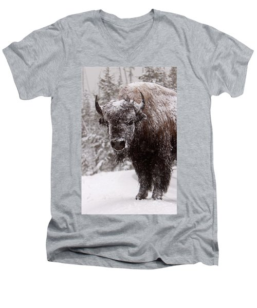 Ice Cold Winter Buffalo Men's V-Neck T-Shirt
