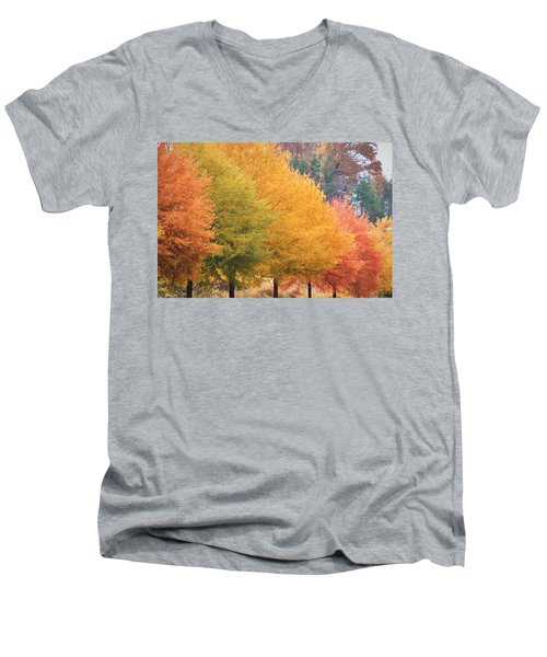 October Trees Men's V-Neck T-Shirt