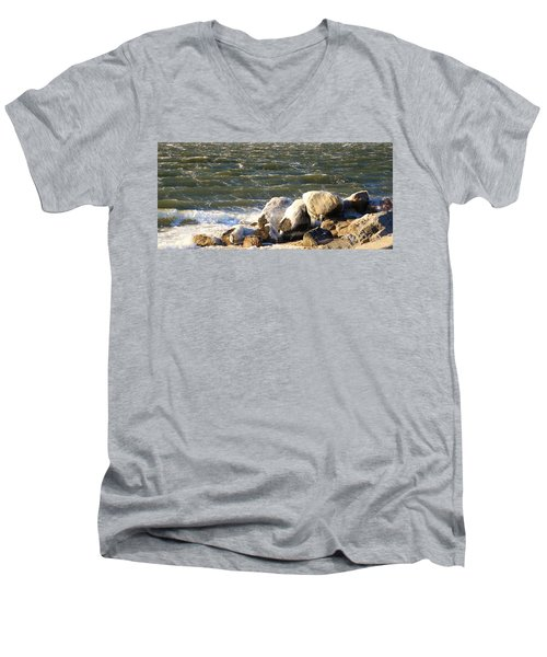 Ice On The Rocks Men's V-Neck T-Shirt
