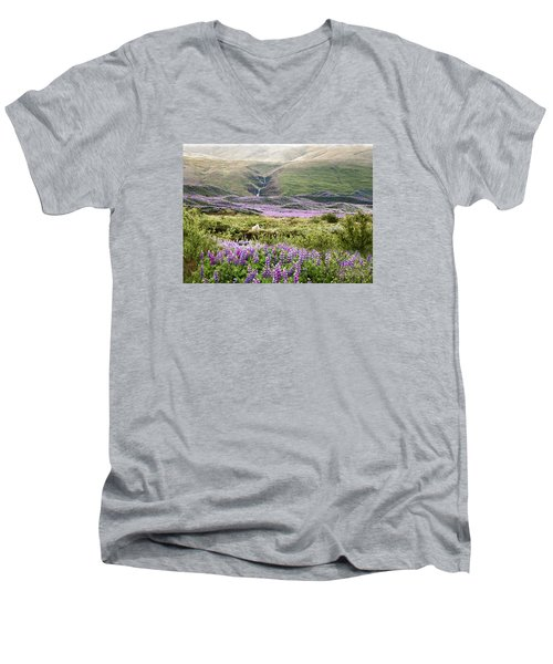 Icelandic Treasures Men's V-Neck T-Shirt by William Beuther