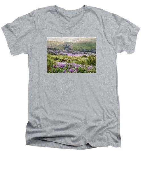 Icelandic Treasures Men's V-Neck T-Shirt