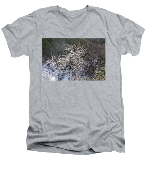 Ice Tree Sentinel Men's V-Neck T-Shirt