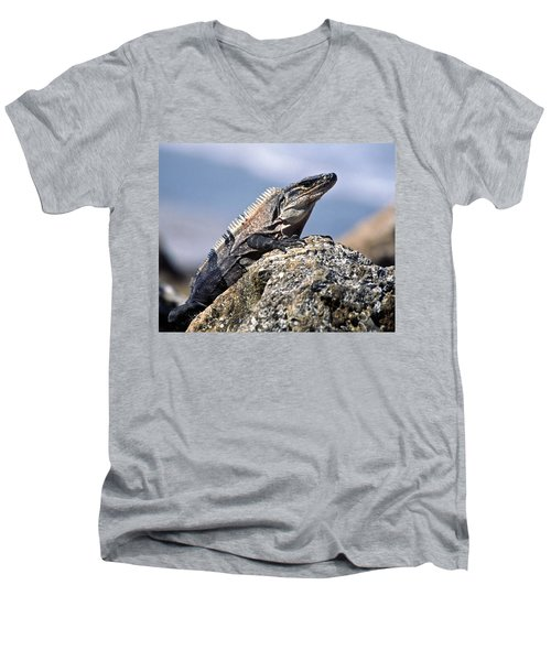 Iguana Men's V-Neck T-Shirt by Sally Weigand