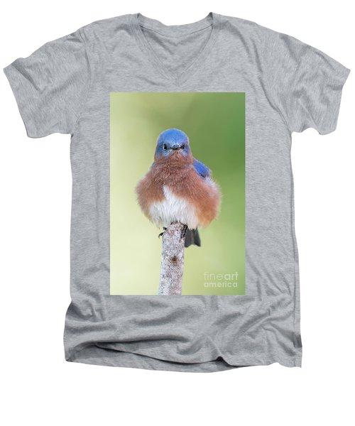 I May Be Fluffy But I'm No Powder Puff Men's V-Neck T-Shirt