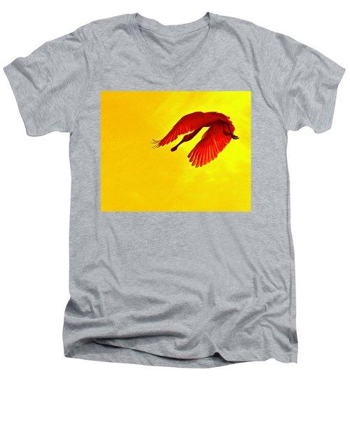 Img_2804 - Version 4 Men's V-Neck T-Shirt