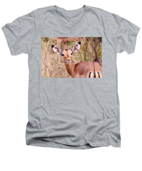Impala Men's V-Neck T-Shirt by Juergen Klust