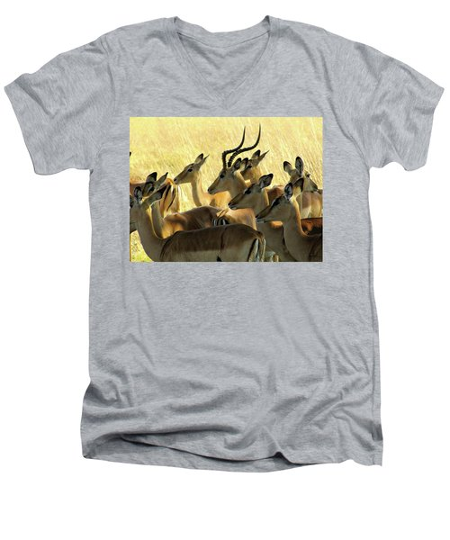 Impalas In The Plains Men's V-Neck T-Shirt