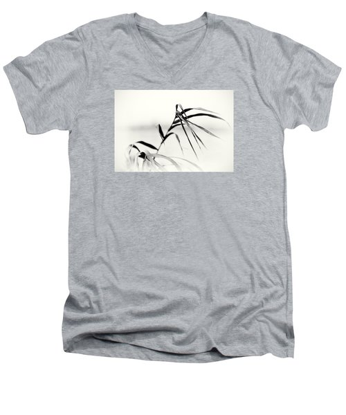 Impressions Monochromatic Men's V-Neck T-Shirt