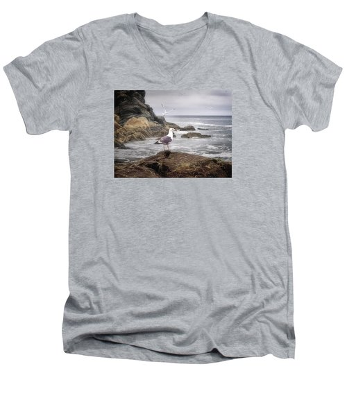 In A Mood Men's V-Neck T-Shirt