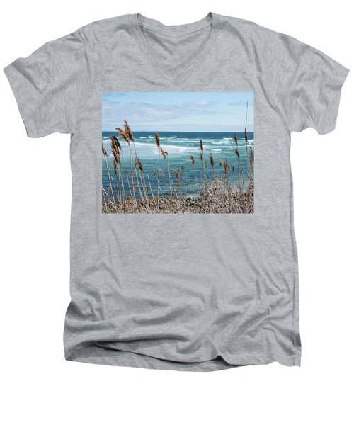 In The Breeze Men's V-Neck T-Shirt