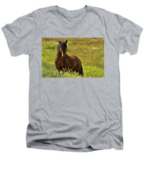 In The Name Of Pride Men's V-Neck T-Shirt