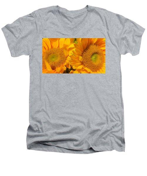 In The Sun Men's V-Neck T-Shirt