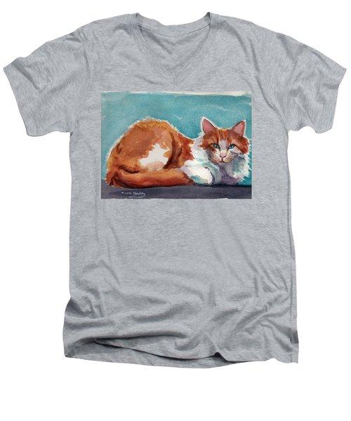 In Turquoise Men's V-Neck T-Shirt