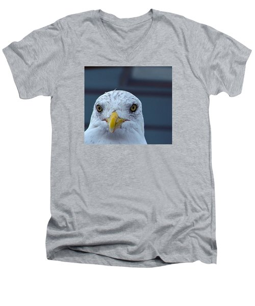 In Your Face Gull Men's V-Neck T-Shirt by Richard Ortolano