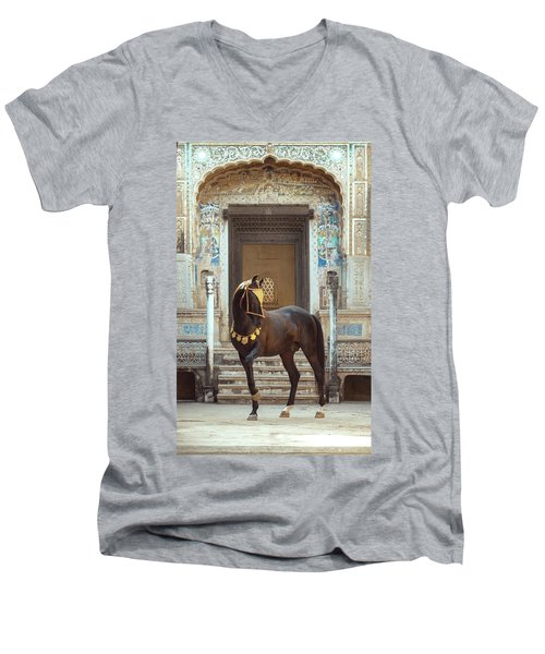 Indian Treasure Men's V-Neck T-Shirt