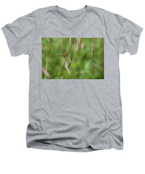 Inl-4 Men's V-Neck T-Shirt