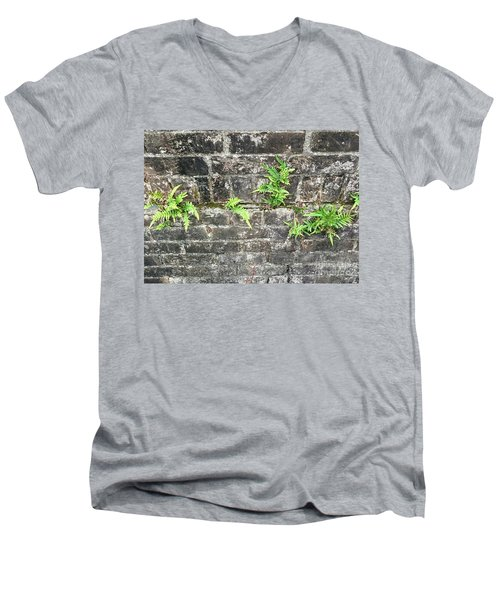 Intrepid Ferns Men's V-Neck T-Shirt by Kim Nelson