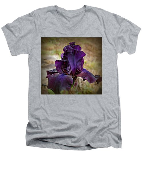 Iris Beauty Men's V-Neck T-Shirt by Katie Wing Vigil