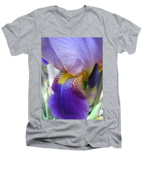 Iris Blossom And Bud Men's V-Neck T-Shirt