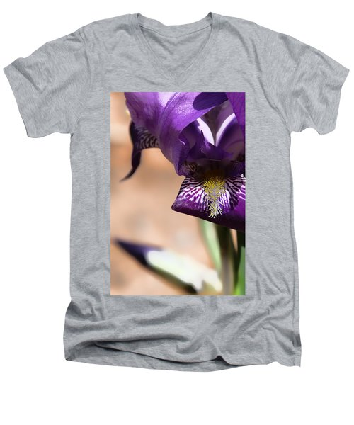Iris Gemanica Men's V-Neck T-Shirt