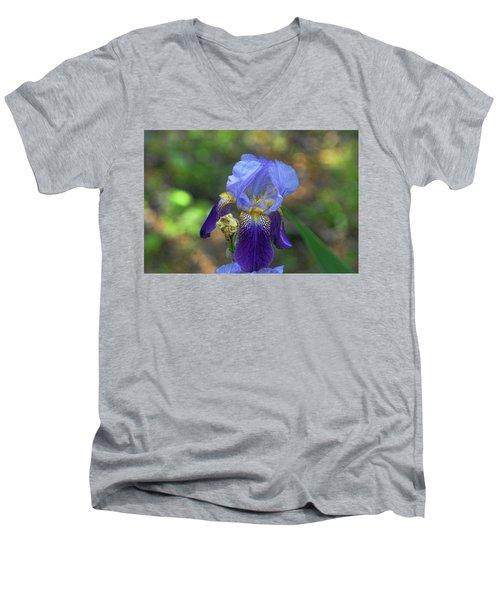 Iris Purple And Blue Men's V-Neck T-Shirt